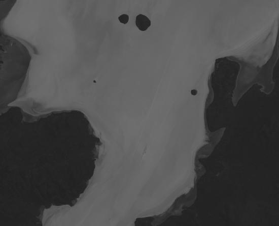 satellite_image.png